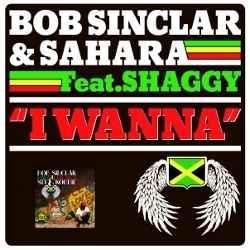 Bob Sinclar feat. Sahara and Shaggy I Wanna single cover Costi Ionita and Andrea